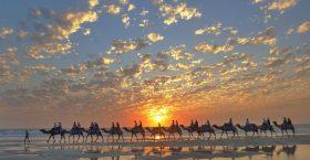 SUNSET CAMEL TOUR (1 hour)